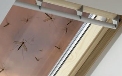 Как да се спасим от досадните насекоми на мансардата?